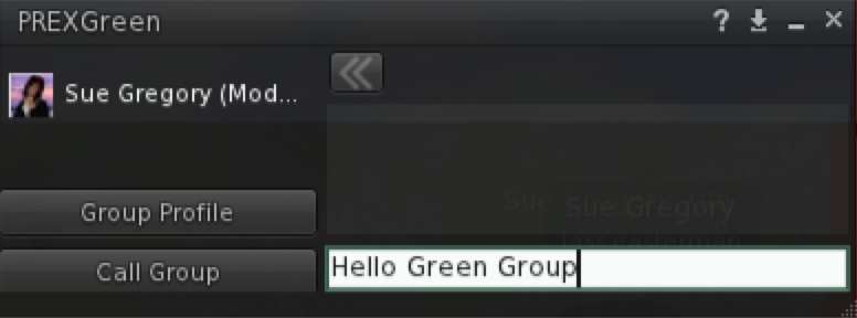 Example Chat Window